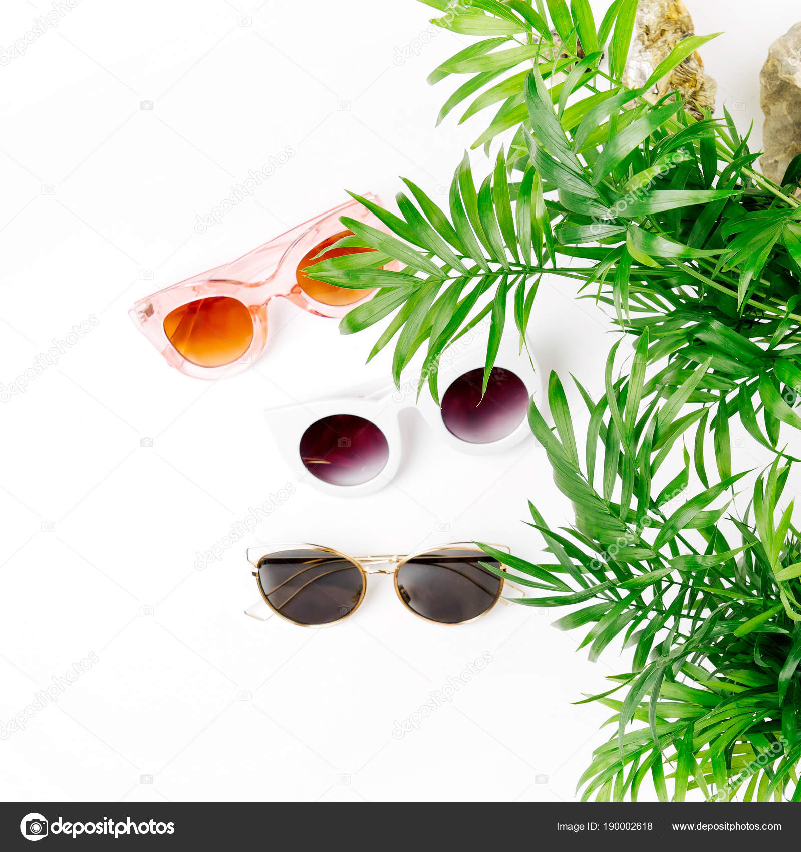 Types Of Tropical Leaves Tropical Leaves Different Types Sunglasses Isolated White Background Stock Photo C Igishevamaria 190002618 There are a multitude of types of tropical plants that blend nicely with palms or other trees and will add charm to almost any garden. depositphotos