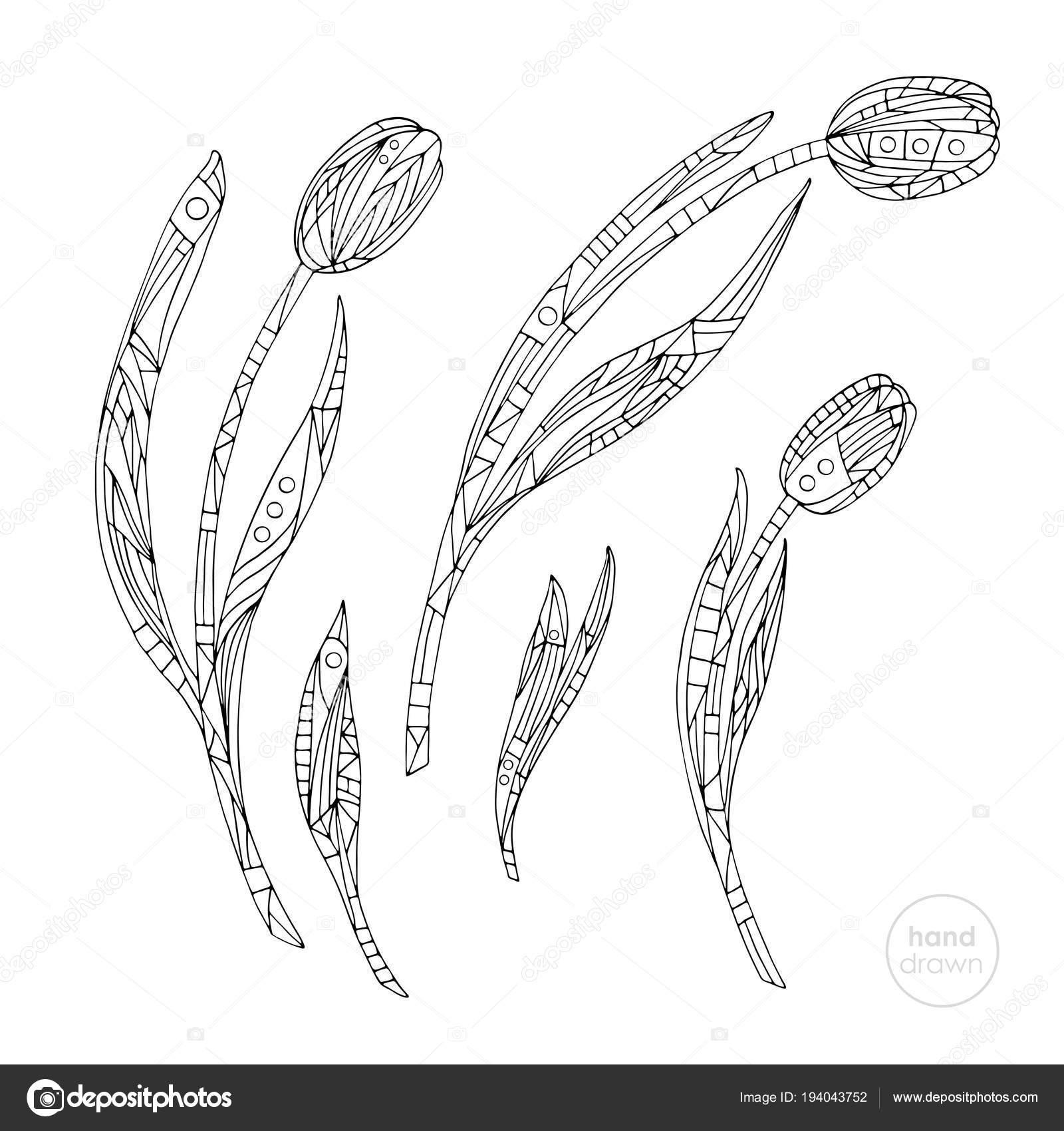 Lale Sayfa Boyama Elle çizilmiş Soyut çiçek Illüstrasyon Vektör