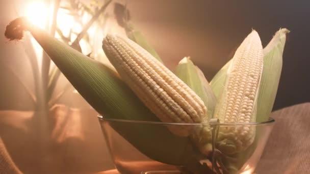 Kukuřice na klacku a světlé pozadí