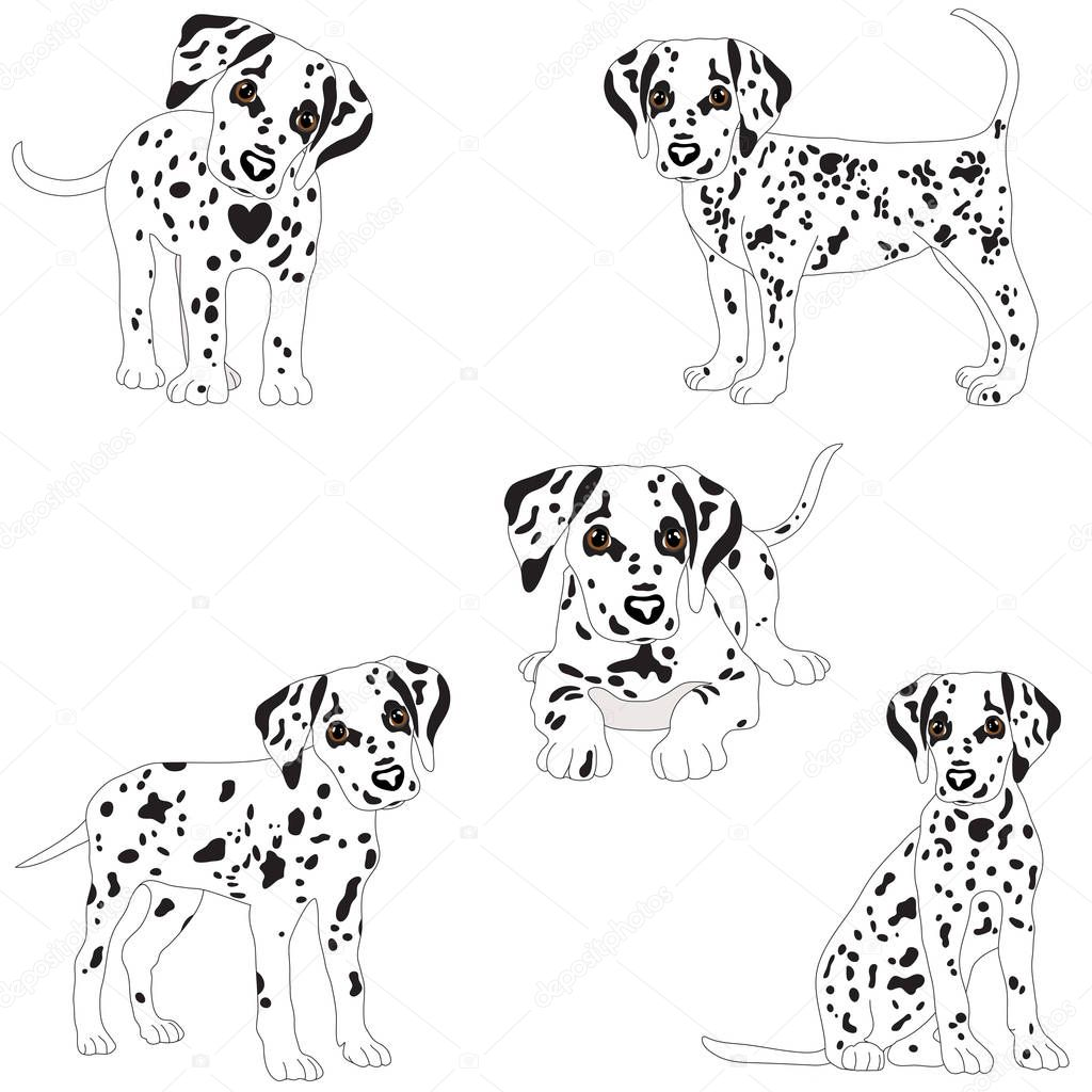 Dalmatians Cute Puppy Sad Vector Illustration Portrait Of Dalmatian Puppy Dog Isolated Premium Vector In Adobe Illustrator Ai Ai Format Encapsulated Postscript Eps Eps Format