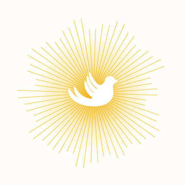 dove in sun lights