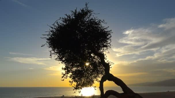 Malebný západ slunce na pobřeží Santa Monica. Los Angeles. Kalifornie.