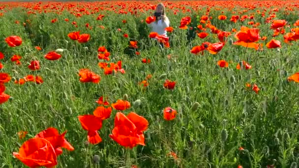 A flowering poppy field near Krasnodar. Russia.