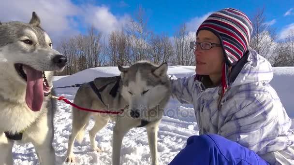 In attesa di gara di cani da slitta. Le montagne caucasiche. Russia