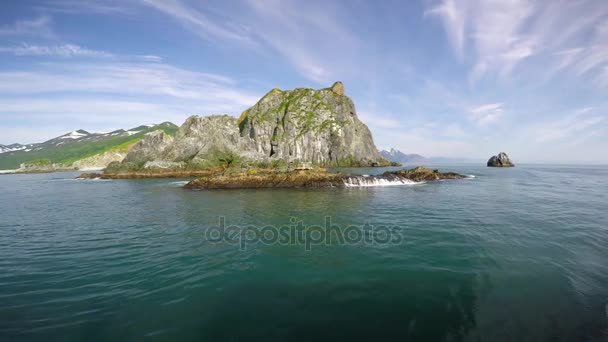 Sea Safari journey from the Kamchatka Peninsula. Sea lions.