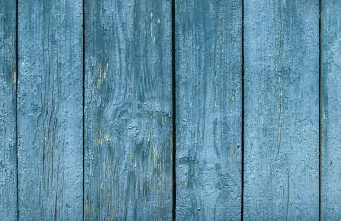 old wooden surface of the strips and planks from  peeling paint