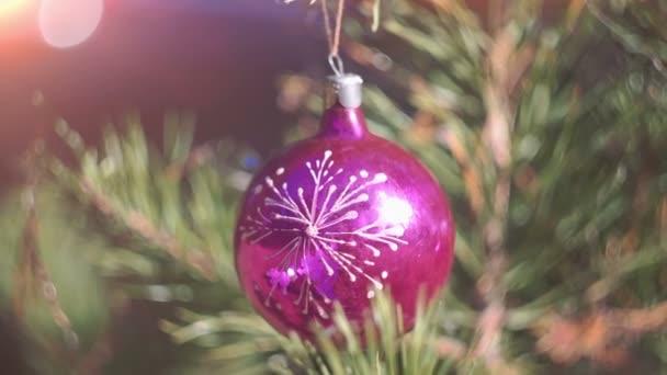 Vánoční strom na pozadí