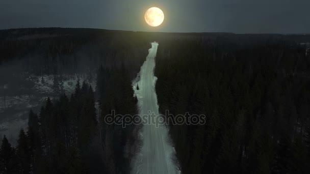 Titokzatos erdő, éjszakai és köd. Világos telihold fény és a fák árnyéka. Légifelvételek