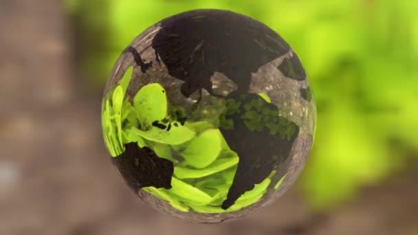 Ökológiai környezet koncepció, üveg globe a zöld fűben