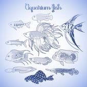 Aquarium fish. Line drawing. — Stock Vector © spline_x ...