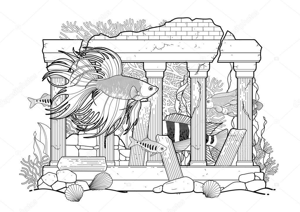 Graphic aquarium fish with architectural sculpture