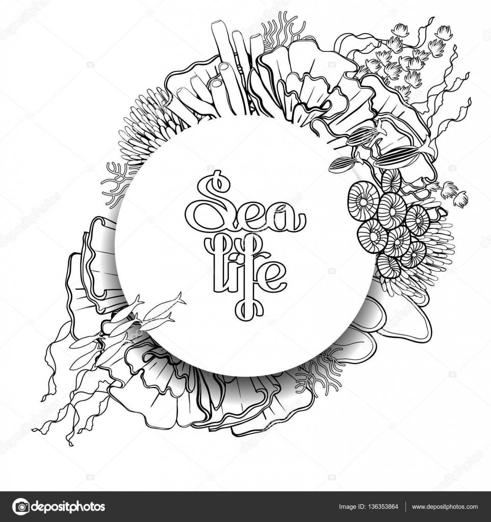 Gráfico pez de arrecife de coral — Vector de stock © homunkulus28 ...