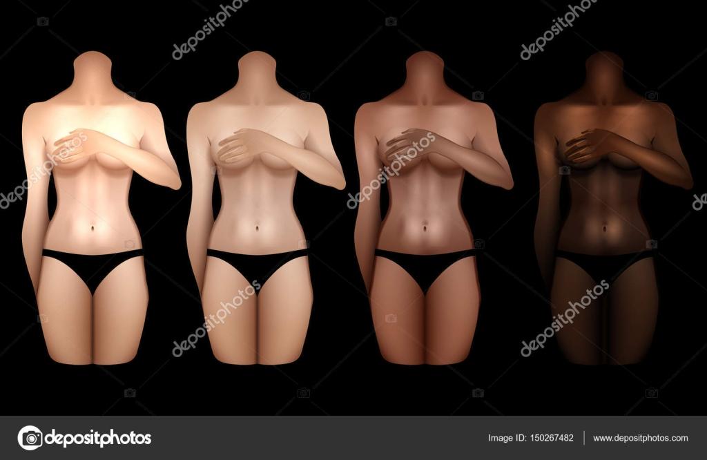 Women Body Templates Selol Ink