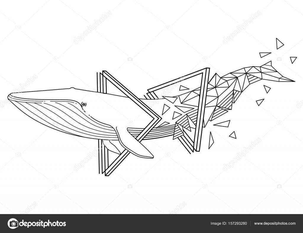 Ballena azul gráfica — Vector de stock © homunkulus28 #157293280