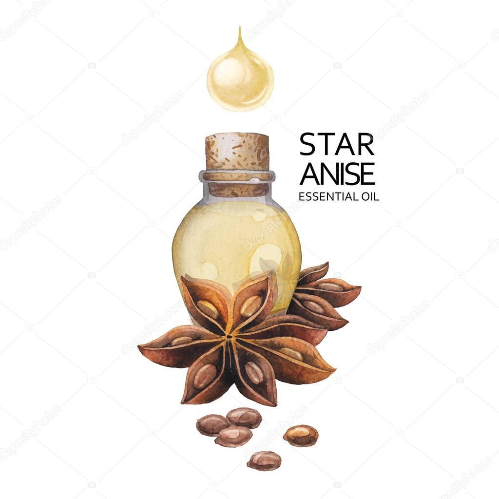 star anise essential oil - HD1024×1024