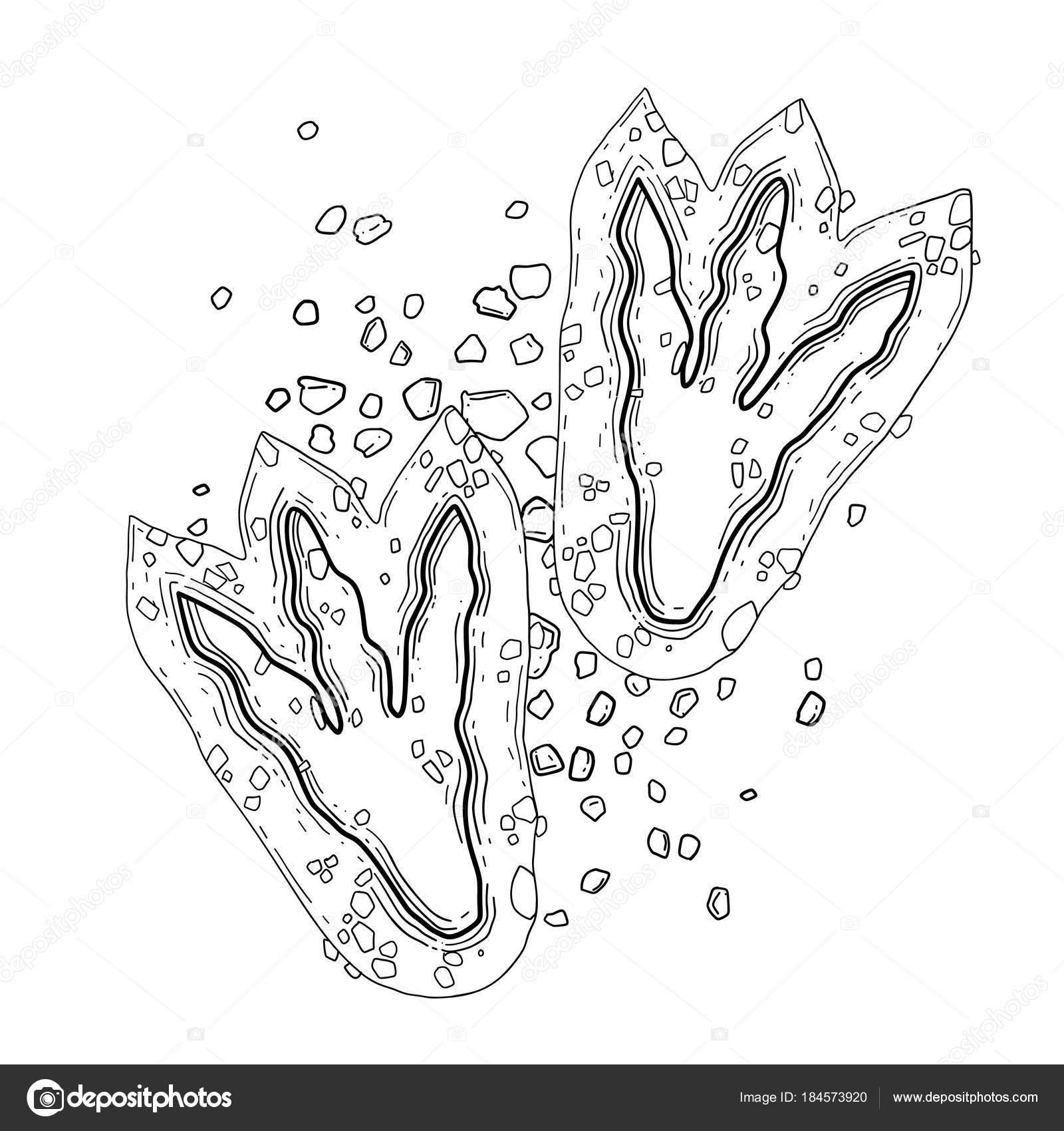 Dibujos: huella de dinosaurio dibujo | Huellas de dinosaurios