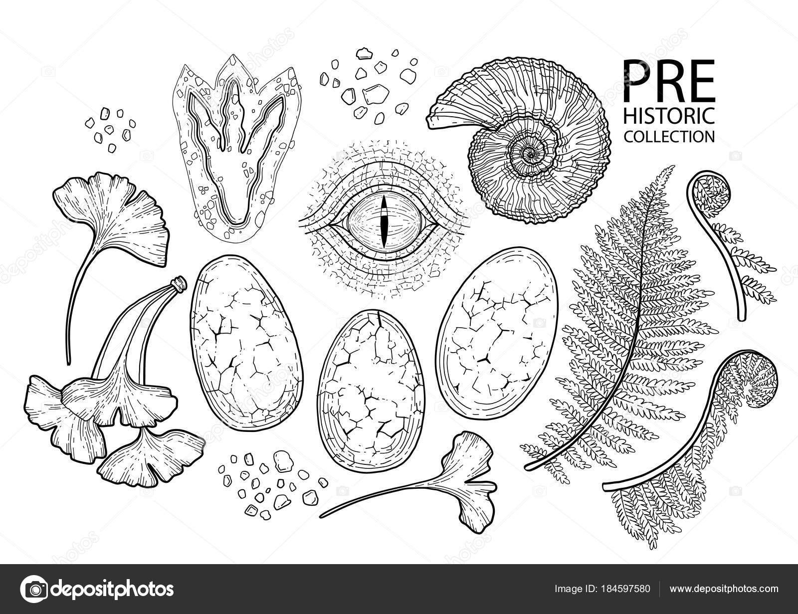 Colección prehistoria gráfica — Archivo Imágenes Vectoriales ...