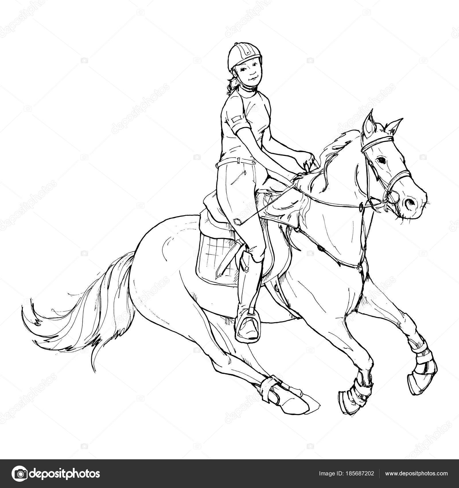 Female Rider Outline Black White Horse Riding Vector Illustrations Stock Vector C Yuliyaart 185687202