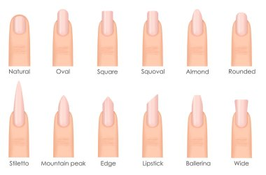 Different fashion nail shapes. Set kinds of nails. Fashion nails type trends. Beauty spa salon woman fingernails set.