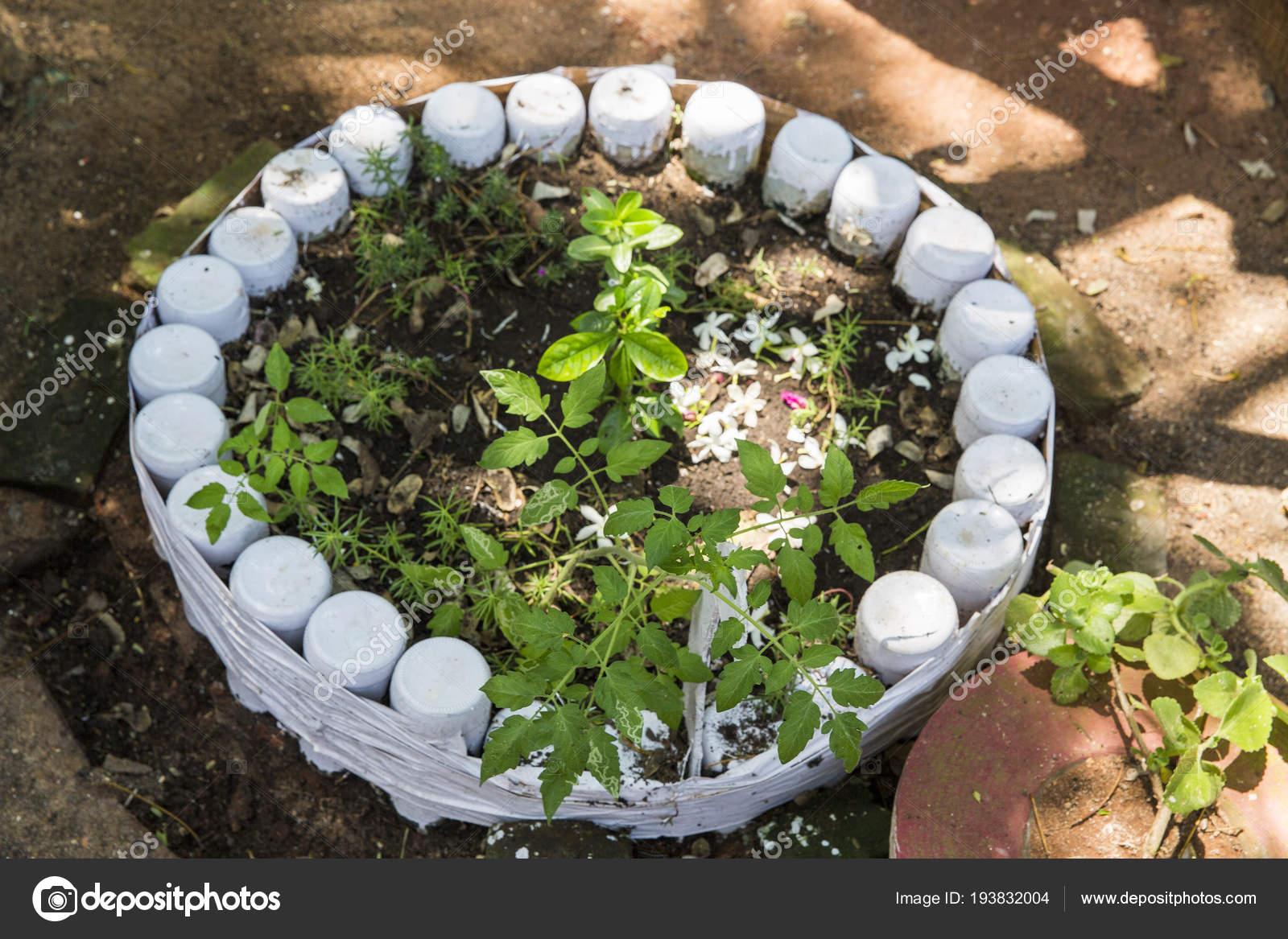 Lit de fleurs insolites dans le jardin. Une plate-bande sur de ...