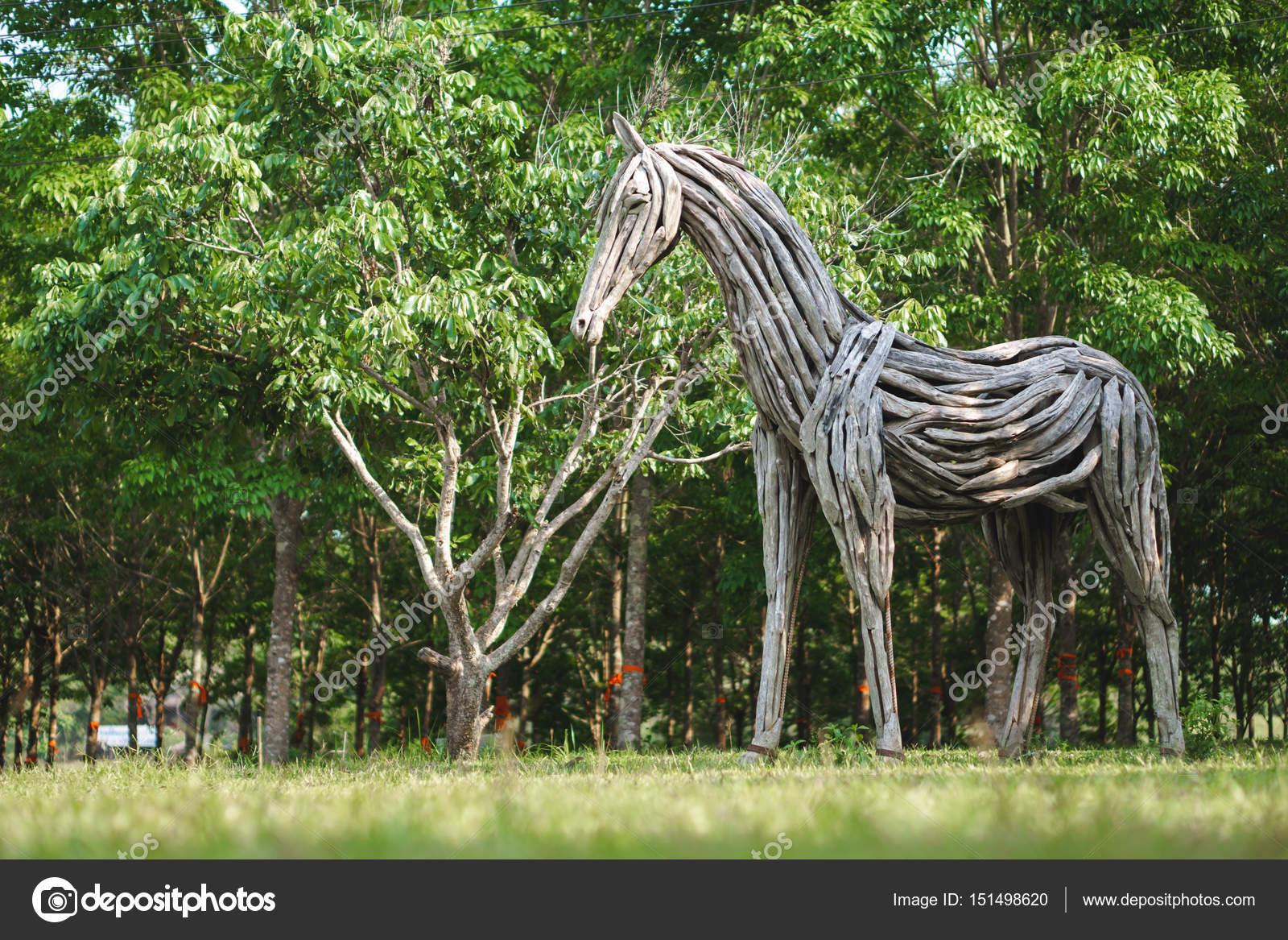 Horse Sculptures Made From Driftwood Wooden Horse Statue Made Of Driftwood Stock Photo C Bonnontawat 151498620