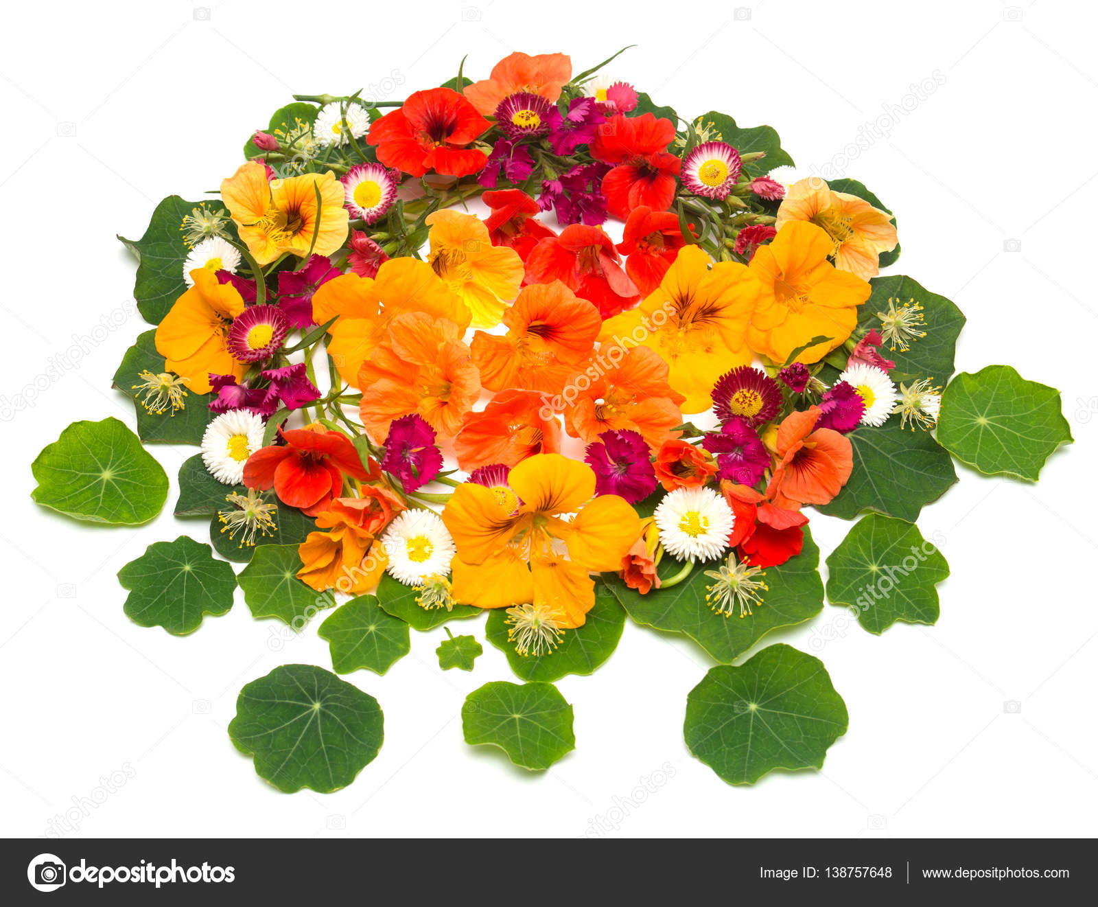 Flowers Wedding card — Stock © FlowerStudio