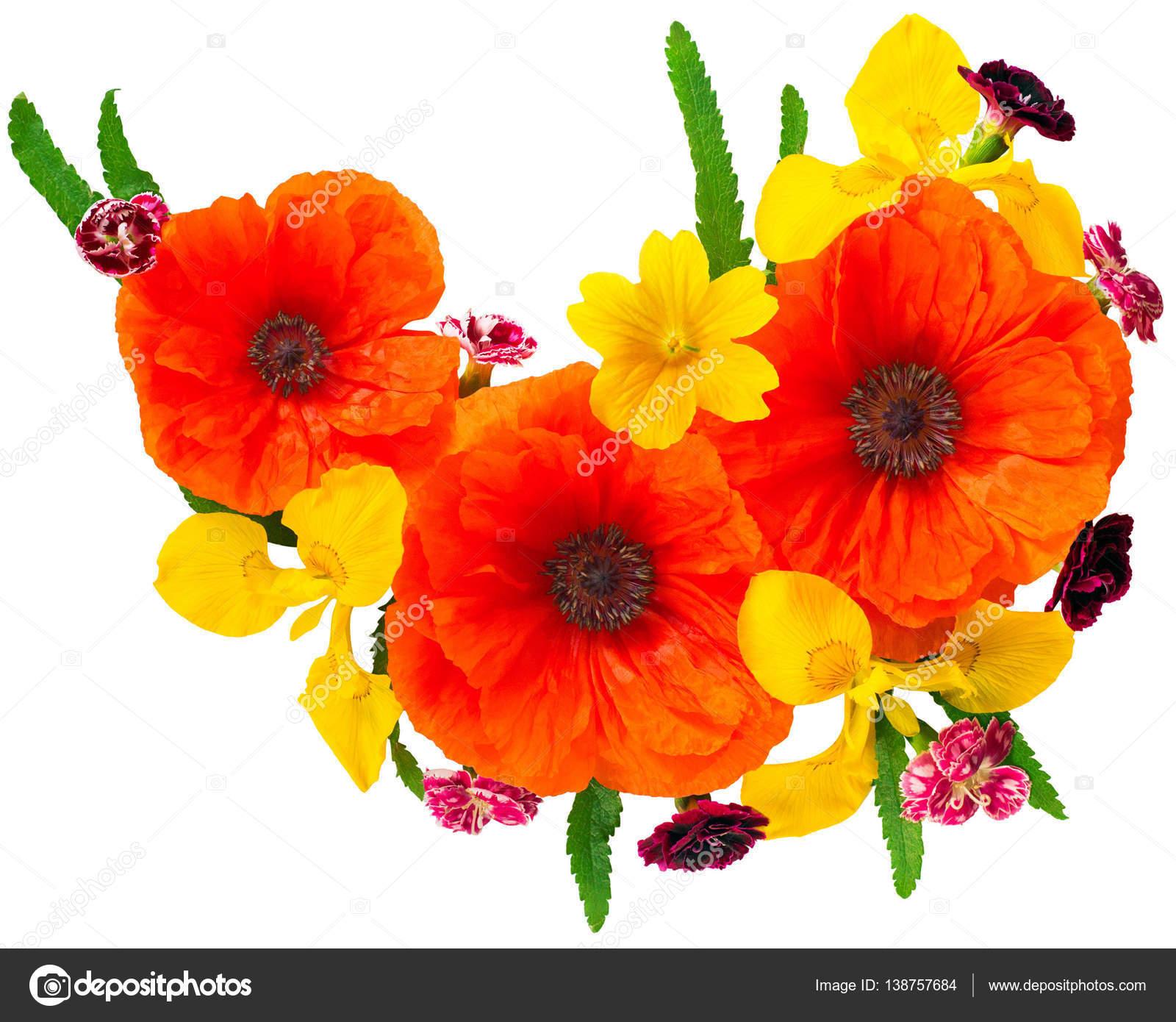Flowers Red Poppies And Yellow Iris Stock Photo Flowerstudio