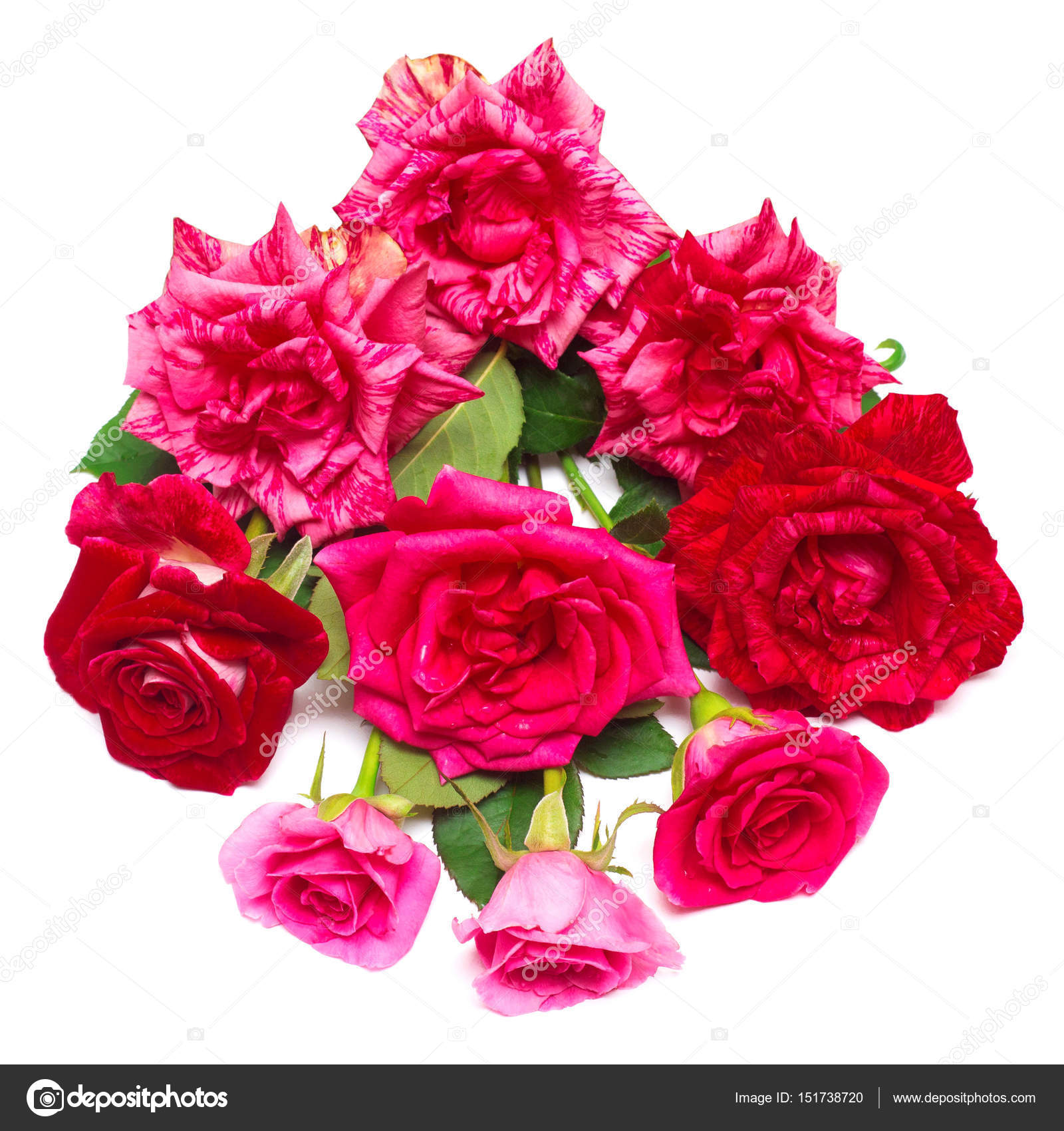 A beautiful bouquet of red flowers stock photo flowerstudio a beautiful bouquet of red flowers roses isolated on white background wedding card summer spring flat lay top view love valentines day izmirmasajfo