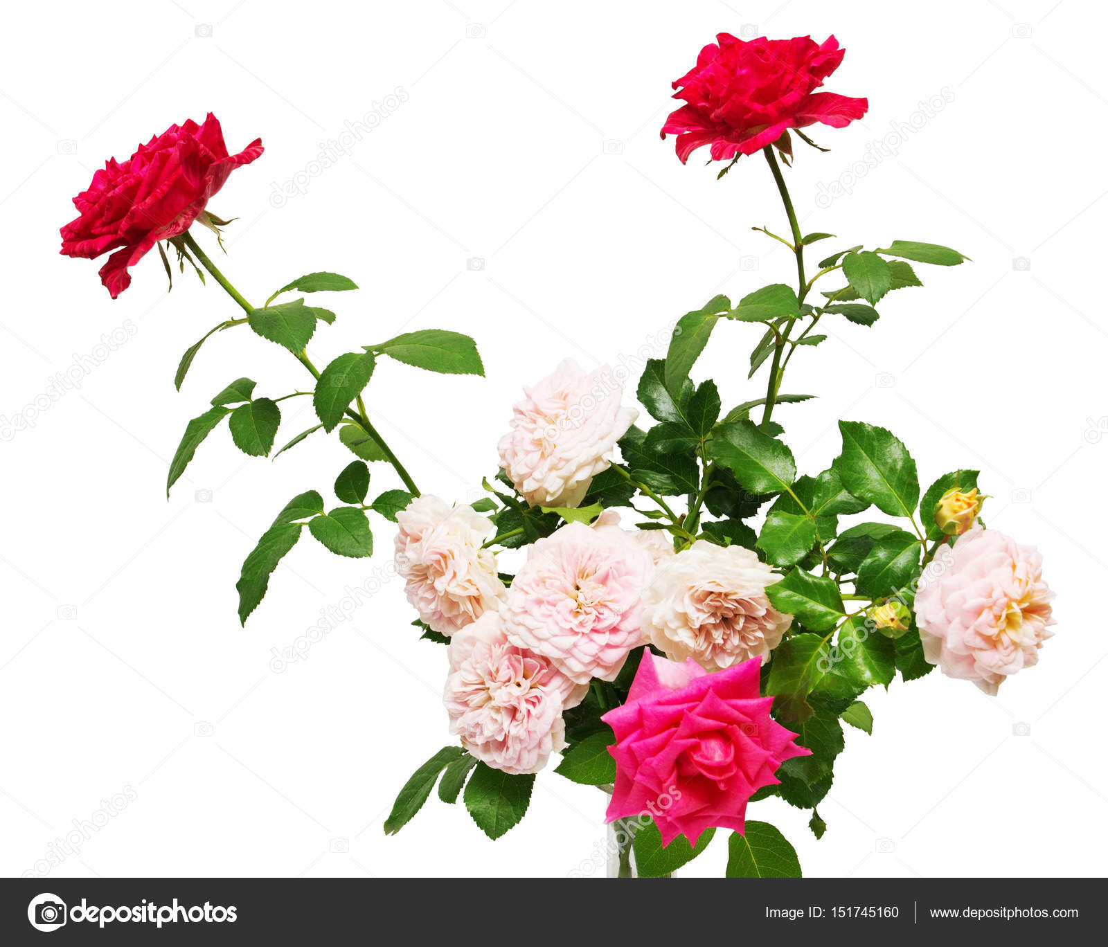 Bouquet of beautiful flowers stock photo flowerstudio 151745160 bouquet of beautiful flowers of roses isolated on white background wedding card greeting summer spring flat lay top view red pink easter photo by izmirmasajfo