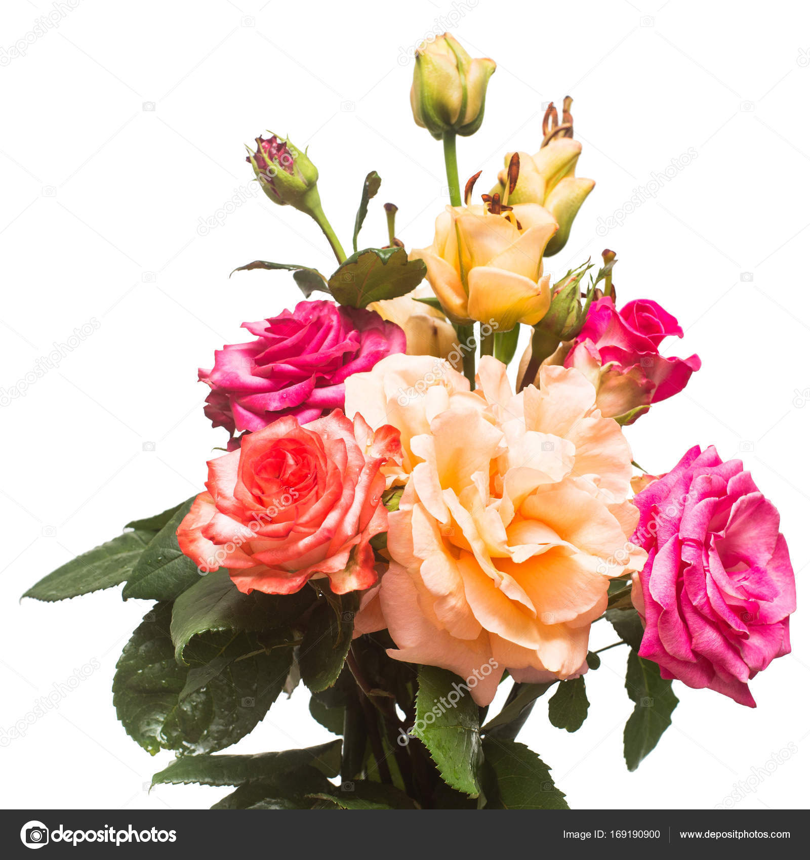 Bouquet of beautiful flowers rose and lily apricot fudge of red ...