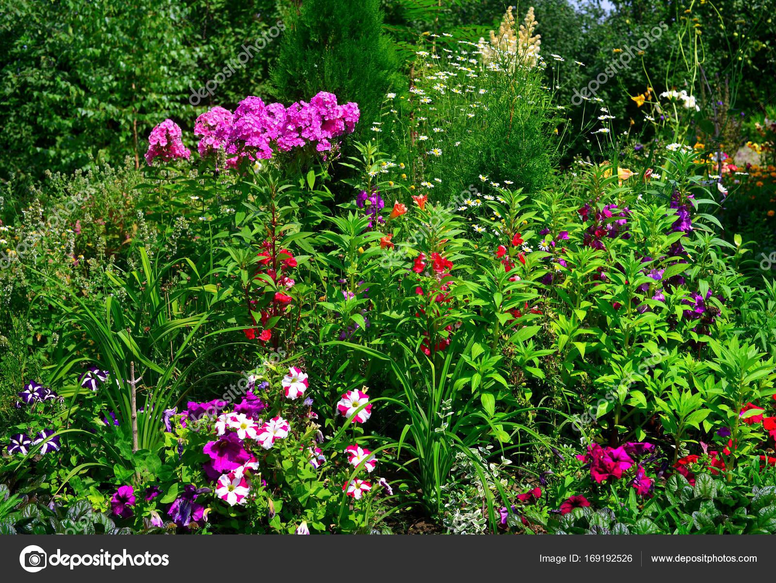 Bilder Blumengarten blumengarten und beete mit taglilien phlox lilien cham