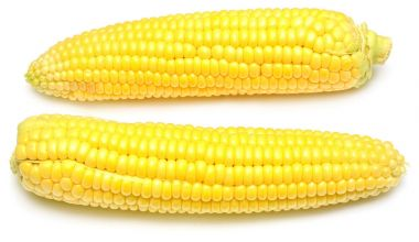 Corn with skin or without skin isolated on white background. A c