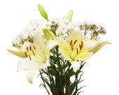 Photo Beautiful bouquet of lily and yarrow flowers isolated on white background. Wedding, flora, life. Stamens and buds. Bride