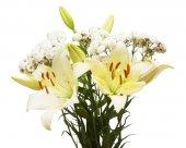 Krásná kytice lilie a řebříček izolovaných na bílém pozadí. Svatba, flóra, život. Tyčinky a pupeny. Nevěsta