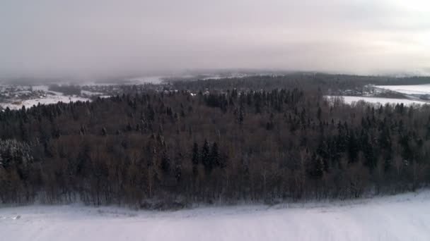 View of winter forest from hot air balloon