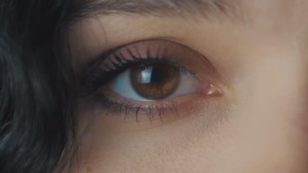 Detailní záběr velký Zenske hnědé oko