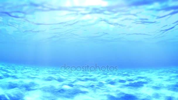 Pod vodou za slunečného dne.