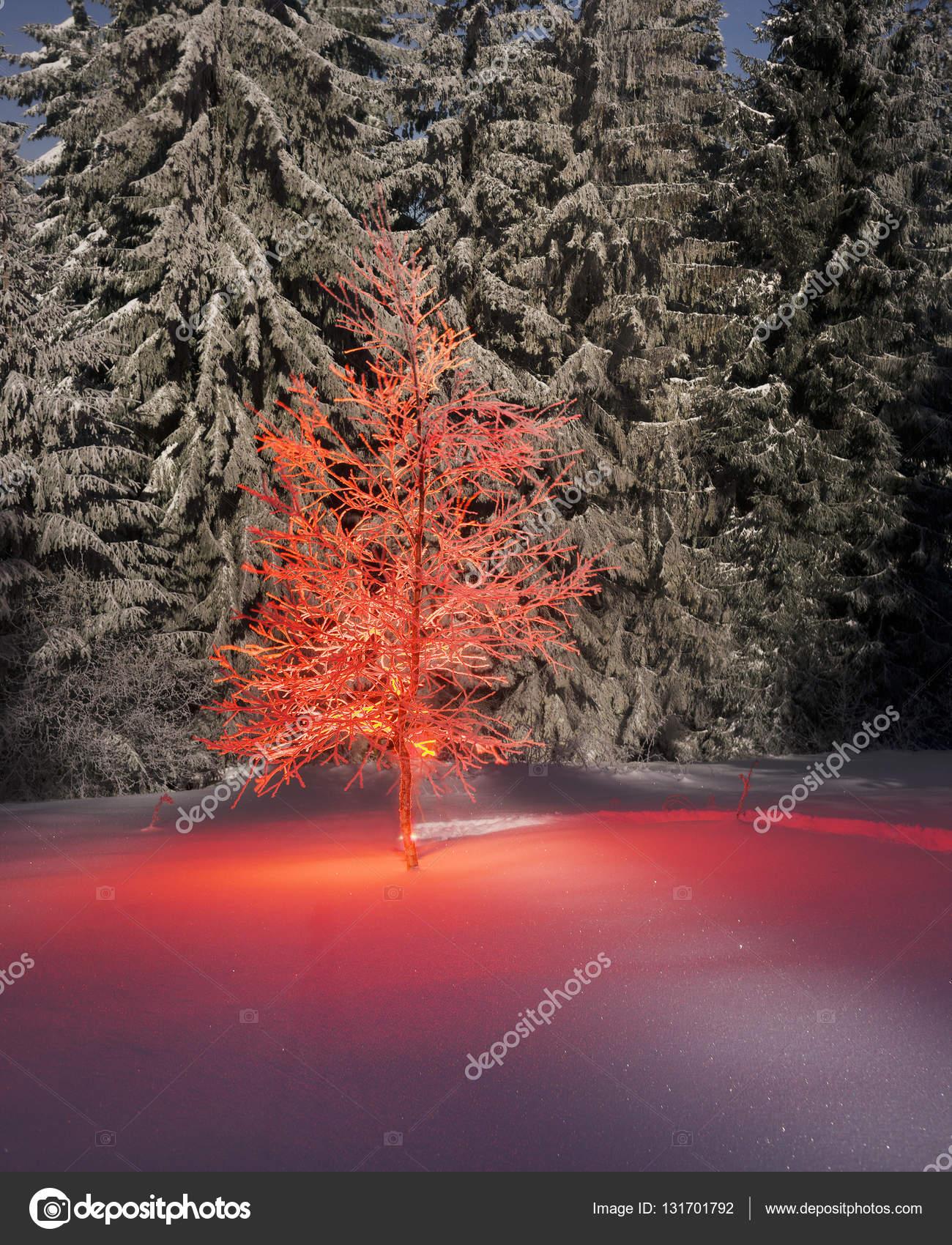 det magiska trädet
