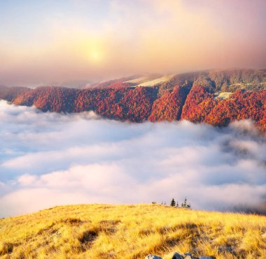 Fog in the autumn mountains