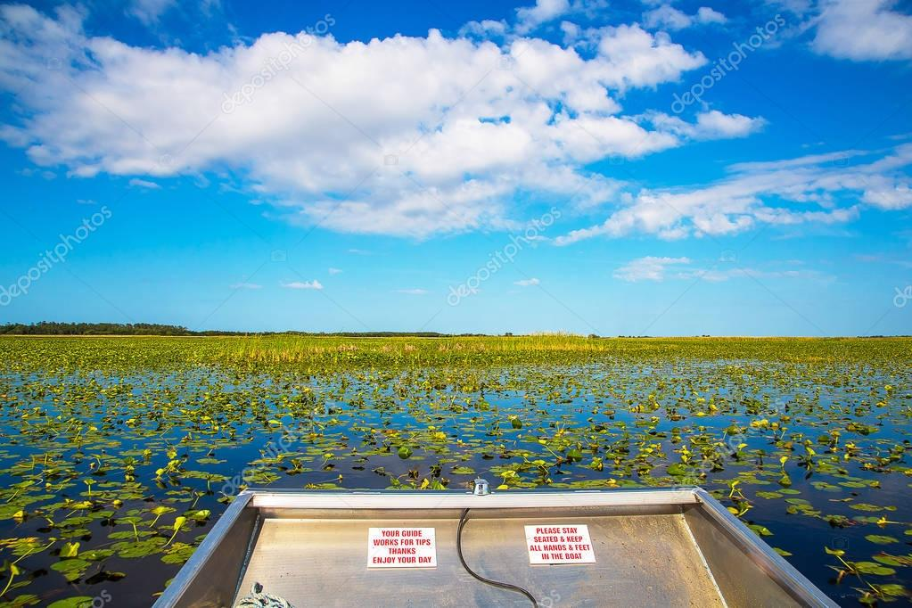 Airboat in a river near Evergades,Florida. Looking for alligators.