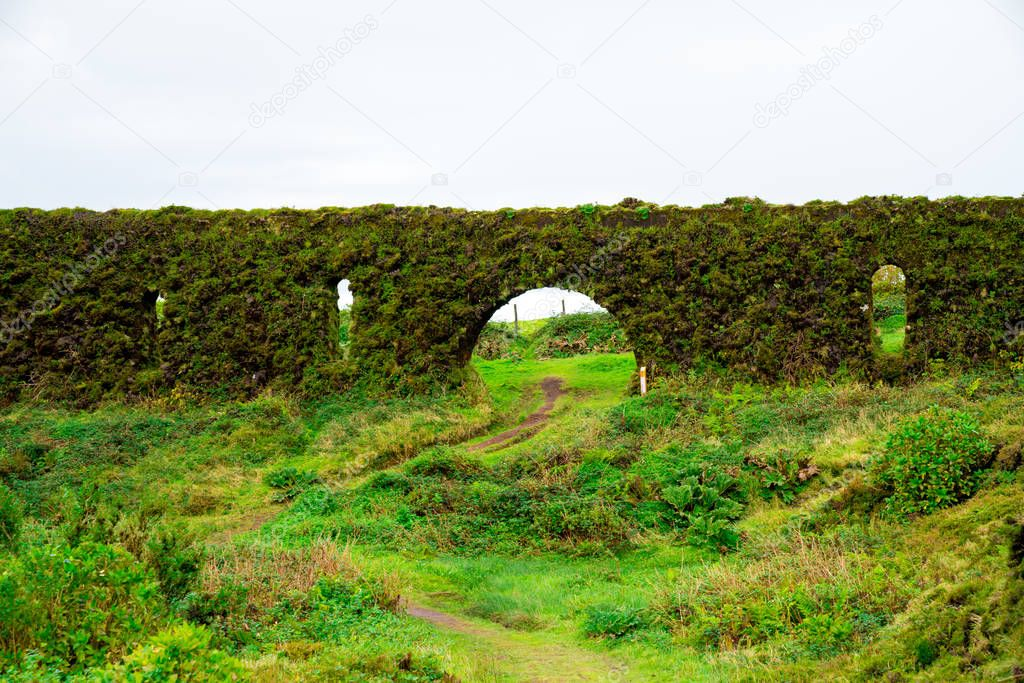 Old brickwall covered with moss with windows on Sao Miguel island, Azores