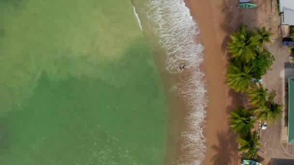 Beautiful aerial view of the Tobago island in the Caribbean sea. Palm Beach In Tropical Idyllic Paradise Island - Caribbean