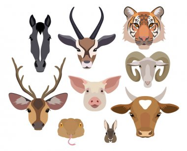 Vector animals heads collection. Flat, cartoon style design elements