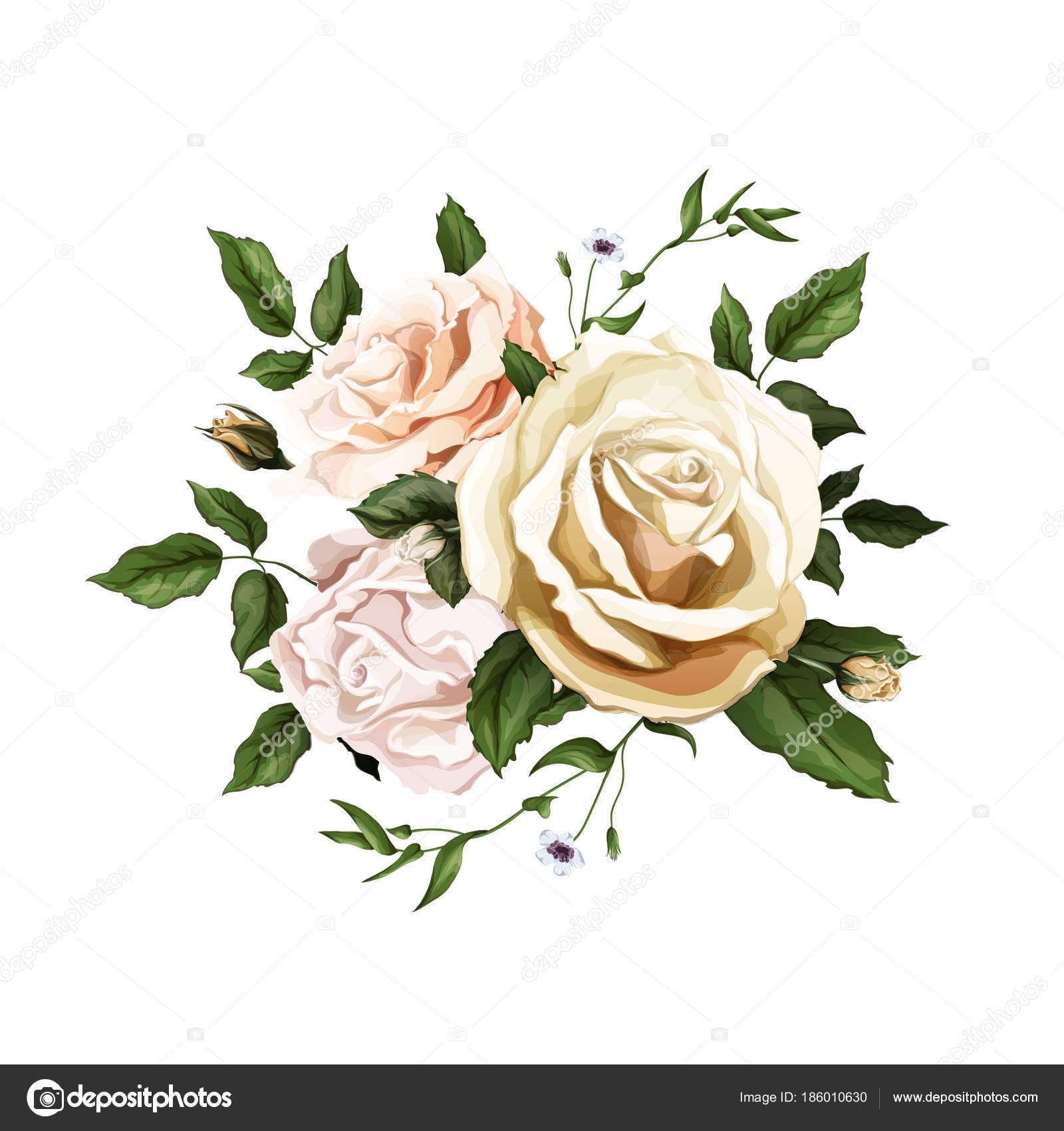 Aquarelle Réaliste Vecteur Rose Bouquet De Feuilles Image