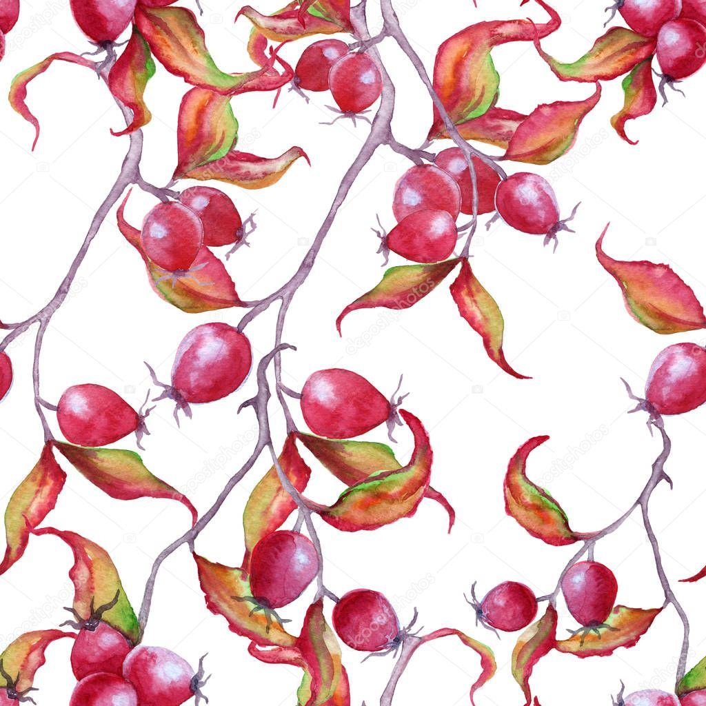 Background branch with wild rose berries. Seamless pattern.