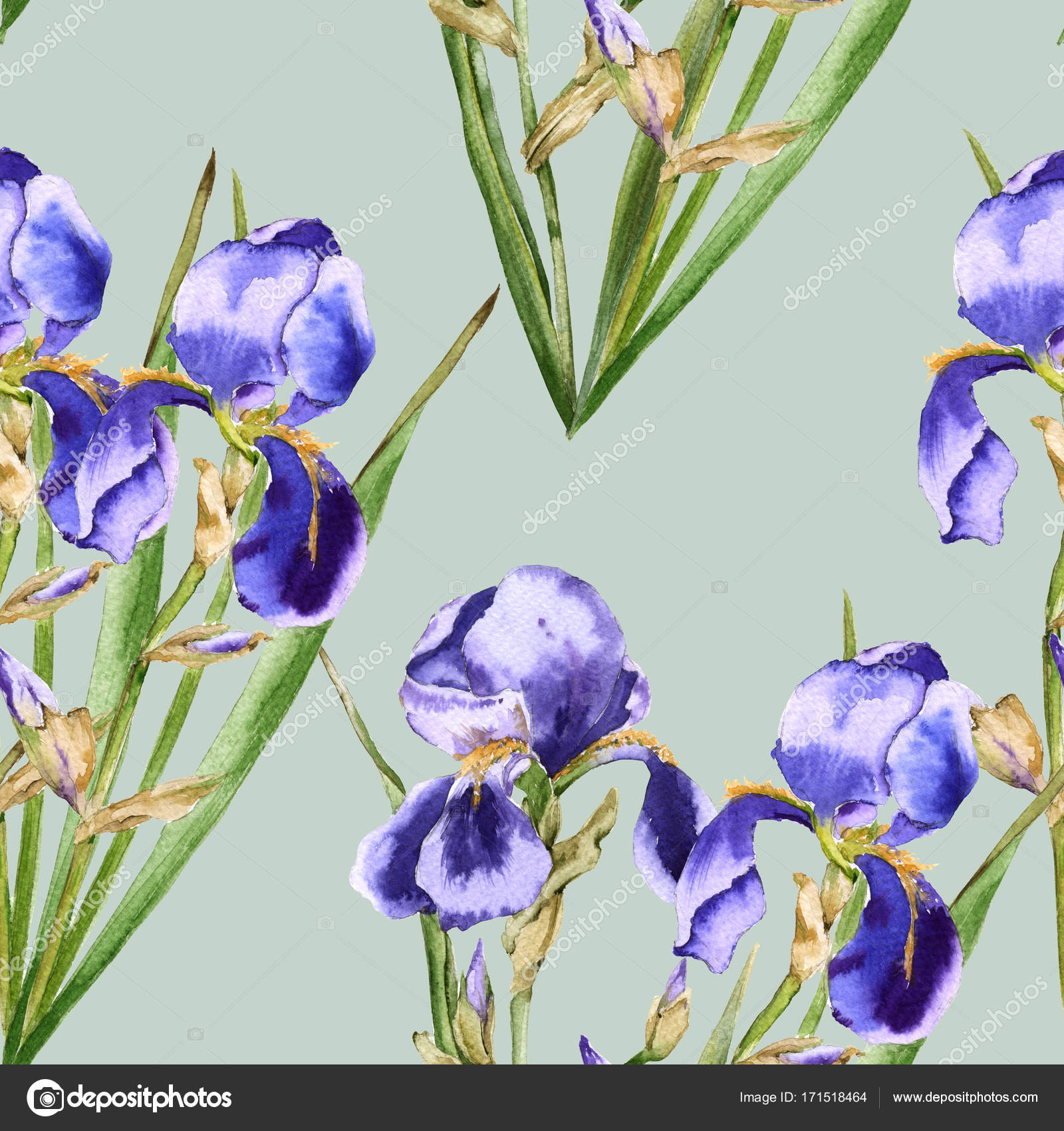 Background Of Iris Flowers Seamless Pattern For Fabric Stock