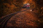 Fényképek Budapest, Magyarország - gyönyörű őszi erdőben a lombozat és a régi színes vonat a pályán a magyar erdő Huvosvolgy