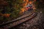 Fényképek Budapest, Magyarország - gyönyörű őszi erdőben lombozat és a régi színes vonat jön ki a magyar erdőben alagút naplementekor