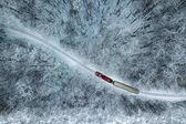 Fényképek Budapest, Magyarország - légi felvétel, a havas erdőben, és piros vonat pályán téli időben rögzített felülről a drone: Huvosvolgy