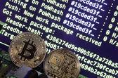 A digitális folyamat cryptocurrency bányászat a GPU használatával. Bitcoins és a videokártya egy működő kijelző és a bányászati képernyőn